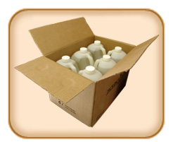 1 Gallon Clear - 6 Bottles Mexican Vanilla (Free Shipping)