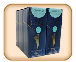 Cocave Shampoo - 6 Pack (free shipping)